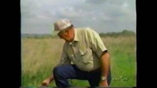 2002 Akc Spo National Beagle Field Trial