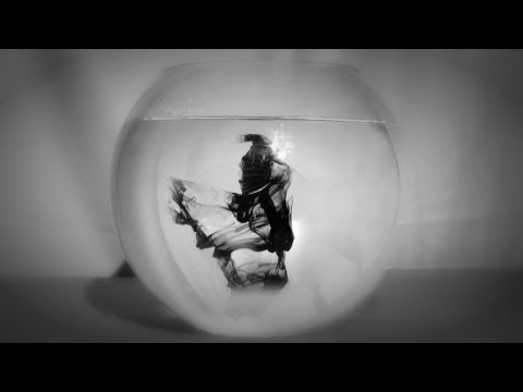 Phaeleh - Whistling in the Dark feat. Augustus Ghost