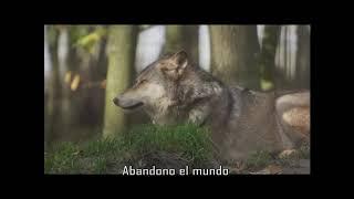 Duhkha Le Pendu - última caminata en el bosque (single 2020)