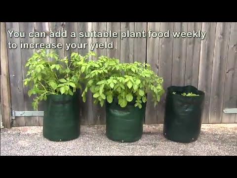 Potato Planters - YouTube on