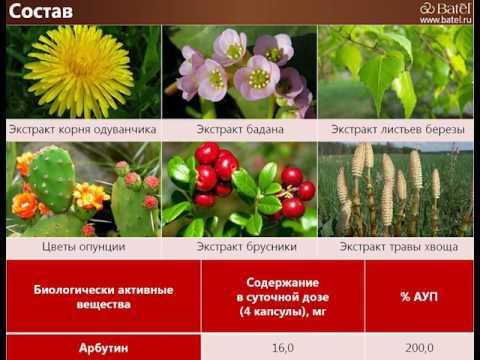 Профилактика ОРЗ (ОРВИ) и гриппа — средства и мероприятия