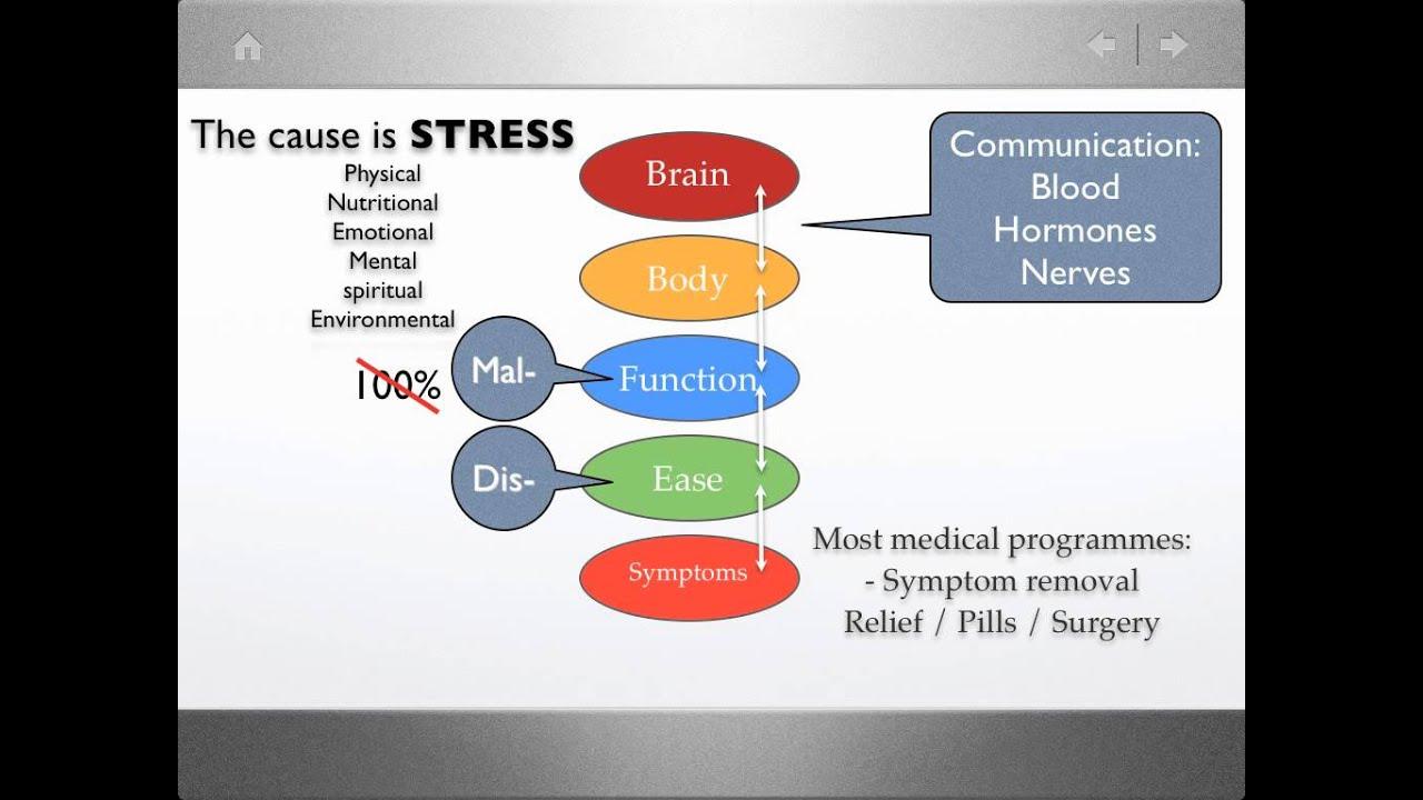 Stress Symptom Diagram