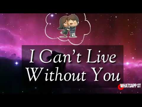 whatsapp status video that i cannt live without you status