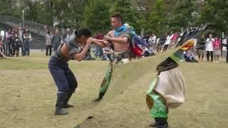 Mongol Bukh in Japan   内モンゴル相撲、モンゴル相撲,ブフ