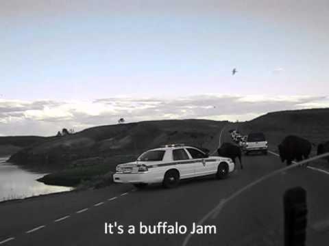 Video 14 Yellowstone