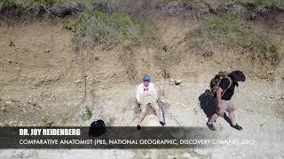 Fossil Exploration with Ector County ISD Teachers and Dr. Joy Reidenberg