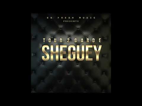 Tour 2 Garde - Sheguey (Audio Officiel)