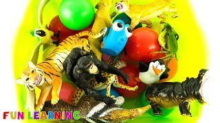 Learn Colors with Wild Animals For Kids with Zoo Animal Toys Education