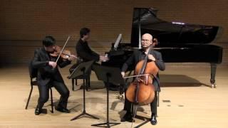 """Voertman Piano Trio playing Dvorak Piano Trio No.4 """"Dumky"""" 6 mov"""