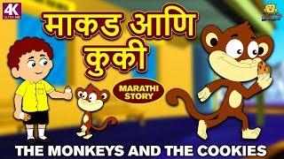 माकड आणि कुकी - Monkeys and Cookies | Marathi Goshti | Marathi Fairy Tales | Marathi Story for Kids