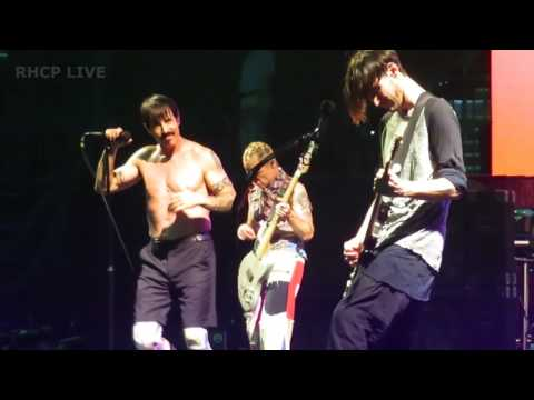 Red Hot Chili Peppers - Soul To Squeeze - Tampa, FL [Multi-Cam]
