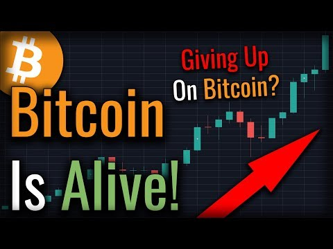 Have You Lost Hope In Bitcoin? Watch This Video!