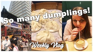 WEEKLY VLOG TIANJIN - DUMPLINGS IN CHINA - CHINESE CAKE - WALKING AROUND TIANJIN