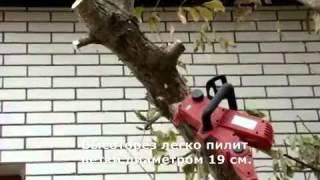 Электрический садовый высоторез Iron Angel EHS 900 - обзор