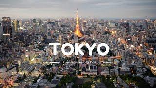 Tokyo City View, Mori Tower / Lovilmi en Japón