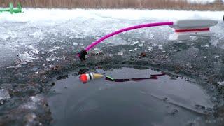 Только опустил поплавок и сразу поклёвка. Первый лёд 2020-2021. Зимняя рыбалка в оттепель