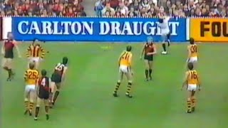 1984 VFL 2nd Semi Final - Essendon vs Hawthorn