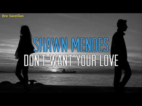 Shawn Mendes - Don't Want Your Love (Lyrics Inglés & Español)