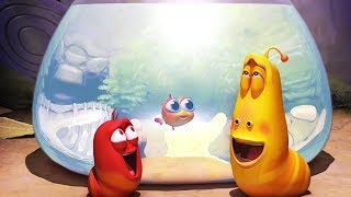 LARVA - AQUARIUM | Larva 2017 | Cartoons | Comics | Larva Cartoon | LARVA Official