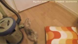 ドアの下の隙間から指を出すと・・・ BGM:ADIEMUS / Schwanda The Bagpi...