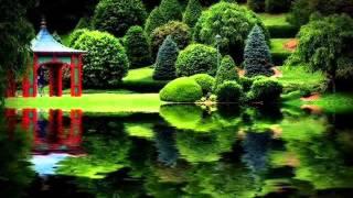 RINDANG TAK BERBUAH ( LIRIK )--   KIREY   (CAVER  BY THEASTY) MP3