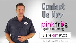 Gutter Cleaning Chicago and Suburbs | Pink Frog Gutter Cleaning