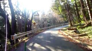 釜伏峠 【埼玉県K361】 TRIUMPH SPEED TRIPLE1050 onboard 2010.12.19