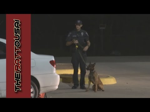 Cedar Park from DUI to K9 search to Arrest