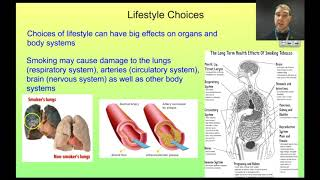 Flippin Science- 3 Organ System Interdependence and Lifestyle Choices