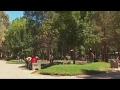 CCE mantiene disposición de permutar terreno del parque