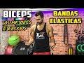 Top Ejercicios BANDAS ELÁSTICAS BICEPS || Biceps con Gomás Elásticas