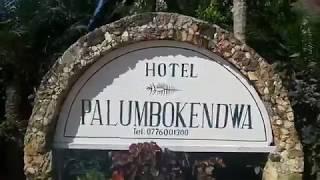 Отель Палумбо Кендва 4* Занзибар Танзания Обзор Территории Отзыв PALUMBO KENDWA
