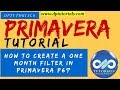 How to Create a One Month Filter in Primavera P6? || Primavera || dptutorials