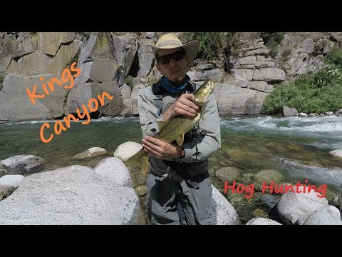 Out There Fishing #7 Kings River At Yucca Point