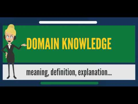 What is DOMAIN KNOWLEDGE? What does DOMAIN KNOWLEDGE mean? DOMAIN KNOWLEDGE meaning