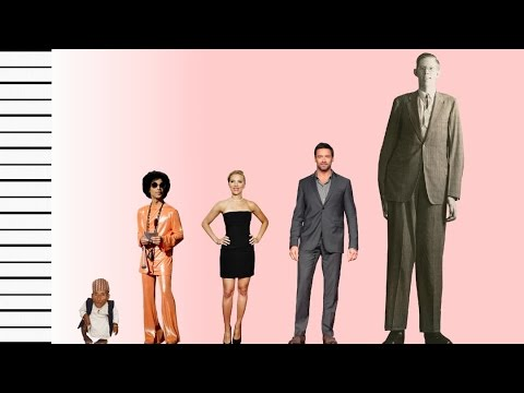 How Tall Is Prince  Celebrity Height Comparison  YouTube