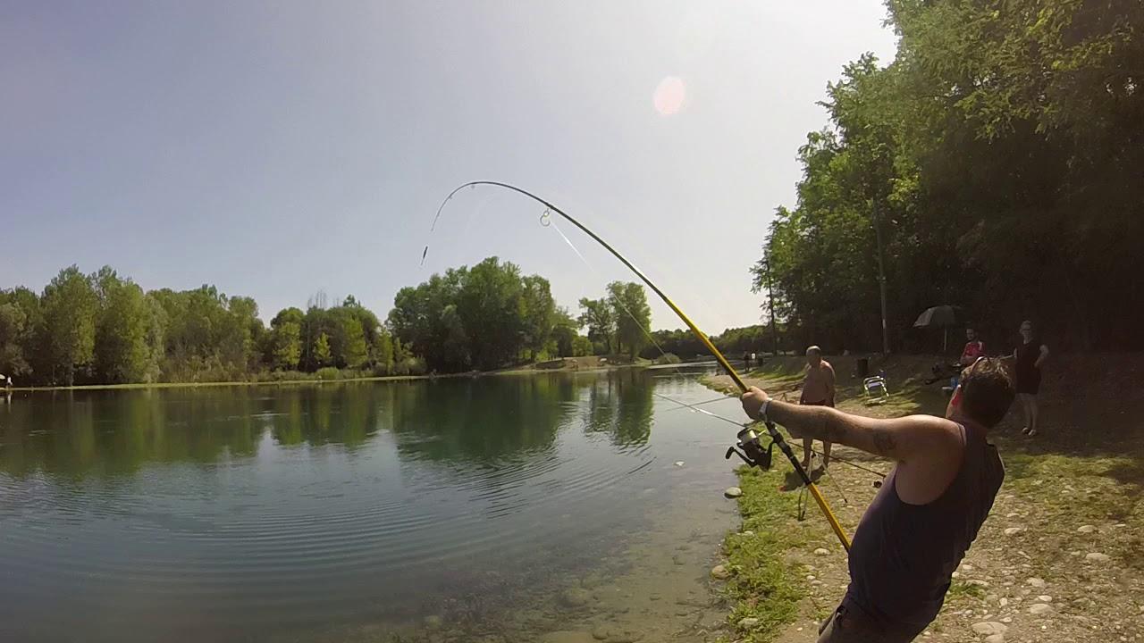 Grosso storione di 98 kg catturato al lago dei gabbiani for Grosso pesce di lago