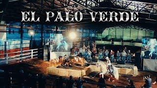 Joel Elizalde - El Palo Verde (En Vivo)