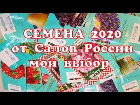 Семена 2020//Мой выбор семян от Садов России//