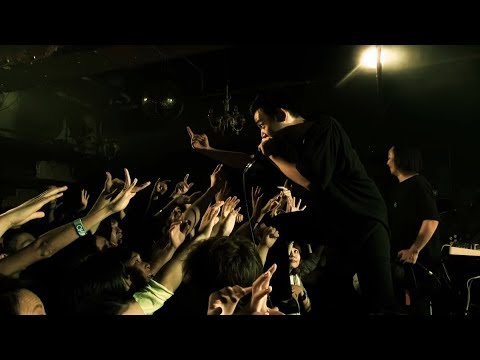 彼女 IN THE DISPLAY「KVE」LIVE MUSIC VIDEO
