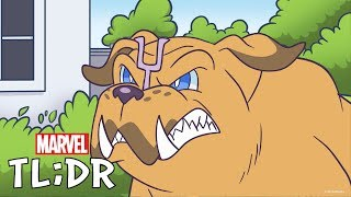 Pet Avengers | Marvel TL;DR