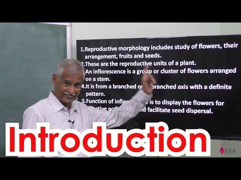 1.Botany | Reproductive Morphology | Introduction