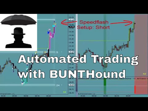 Bloodhound automated trading with BUNT
