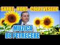 Download CEA MAI ASCULTATA MUZICA DE PETRECERE SARBE SI HORE COLAJ DE VESELIE PROGRAM SUPER
