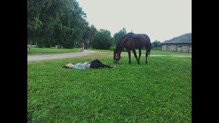 ЖИВИ С ОГНЁМ В СЕРДЦЕ /конный спорт / МОТИВАЦИЯ