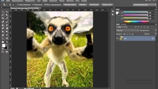 Уроки Photoshop #21. Как изменить масштаб фотографии(Интересные и понятные уроки по освоению Фотошопа \ Photoshop CC ! Все уроки тут https://www.youtube.com/playlist?list=PLYQ3_PoIW4vhjPcZmtafD3T., 2015-06-04T07:17:13.000Z)