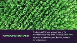 Kazmira Hemp Farm in Colorado - Fulfilling Consumer Demand for Wholesale CBD Oil and Isolate