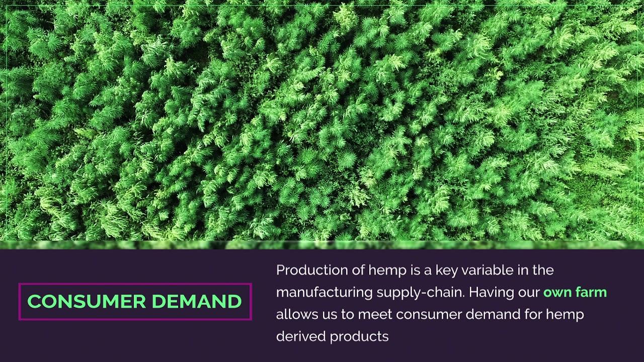 Kazmira Hemp Farm in Colorado - Fulfilling Consumer Demand for Wholesale  CBD Oil and Isolate