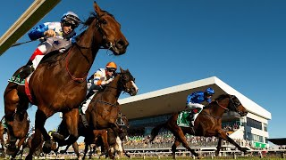 Pro Group Racing - Show Us Your Tips - Doomben 10000 & Goodwood Day Preview