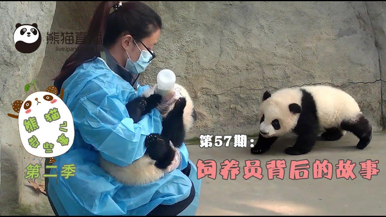 《熊貓那些事兒2》— Ep57 飼養員背後的故事 20160714 | iPanda - YouTube